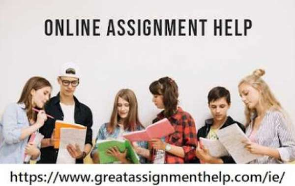 Best Service Provider OF Assignment Help In Ireland