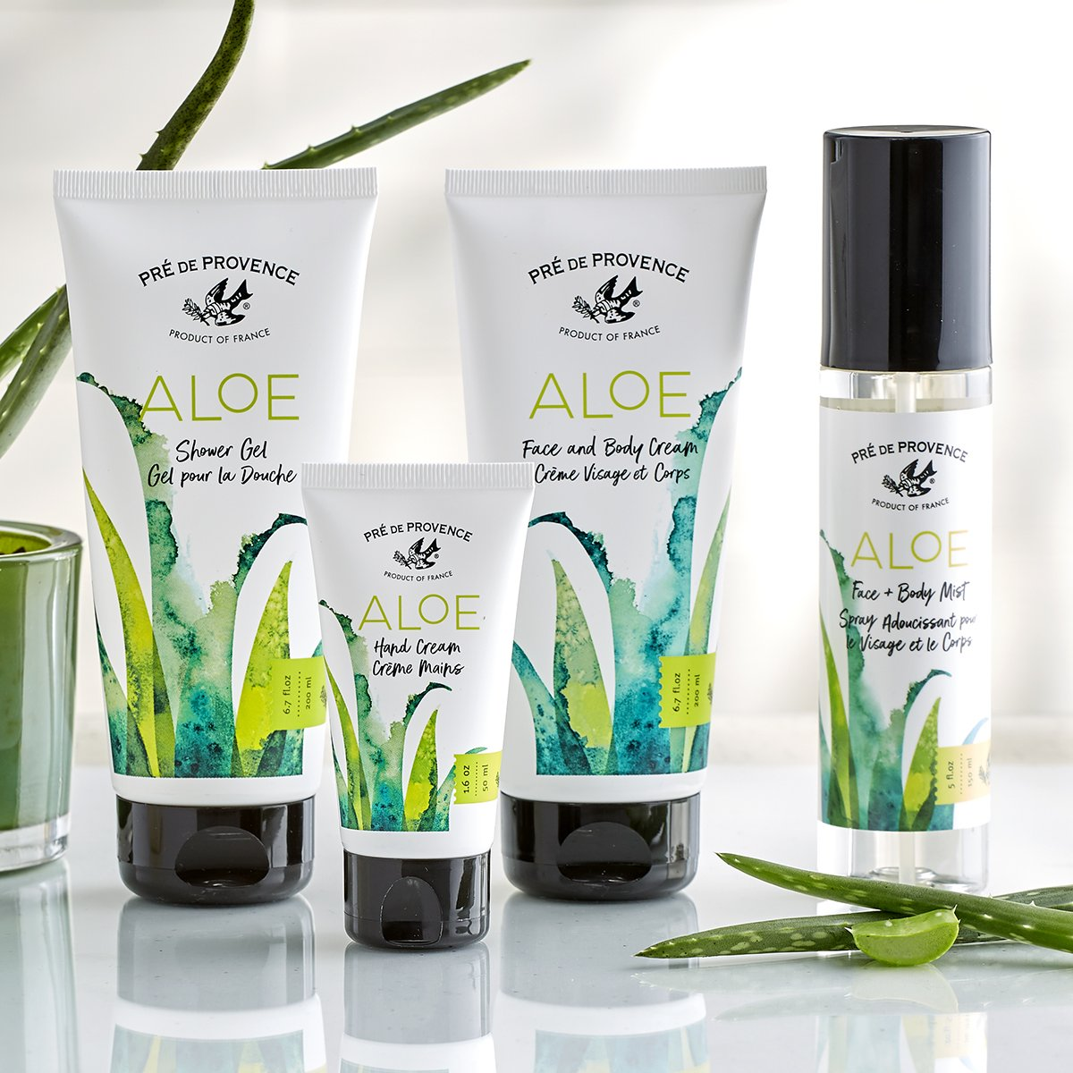 Get Almond, Rose Petal, Ginger Body Lotion, and More